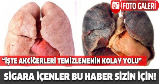 Sigara İçenler Bu Haber Sizin İçin! İşte Akciğerleri Temizlemenin Kolay Yolu...