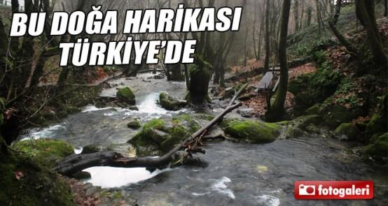Bu doğa harikası TÜRKİYE!de