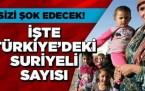 İşte Türkiye'deki Suriyeli Sayısı!