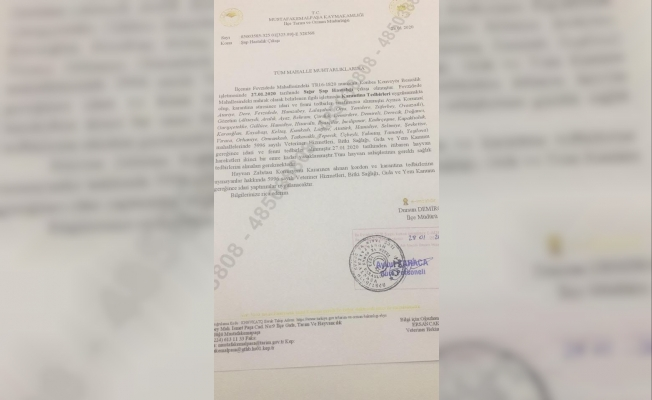 Bursa'da 'şap' karantinası