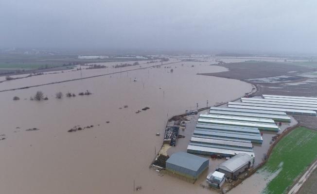 (Özel) Hırsızlar sele sebep oldu...Binlerce dönüm ekili alan ve 2 bin boğa sular altında kaldı