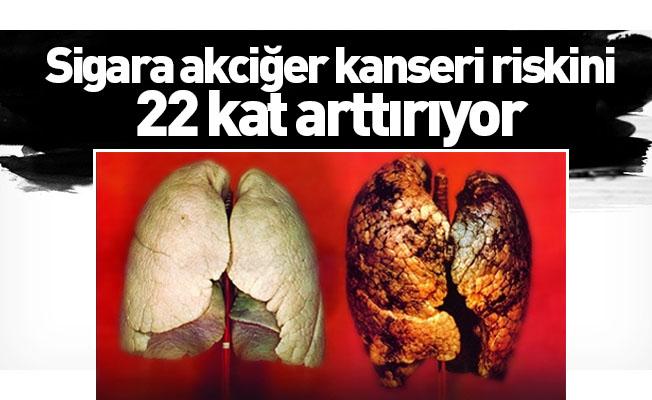Sigara akciğer kanseri riskini 22 kat arttırıyor