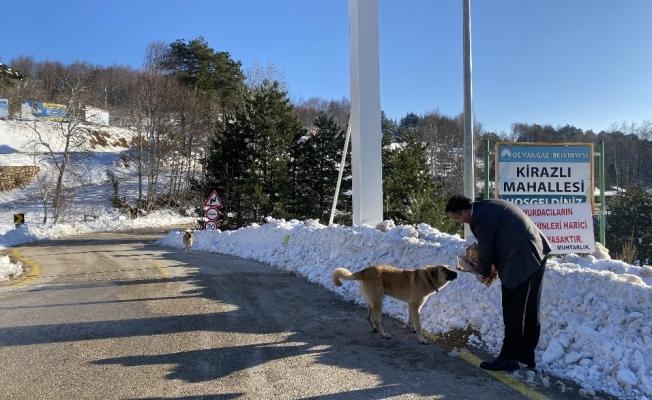 Uludağ'daki kar ve soğuk onları vurdu