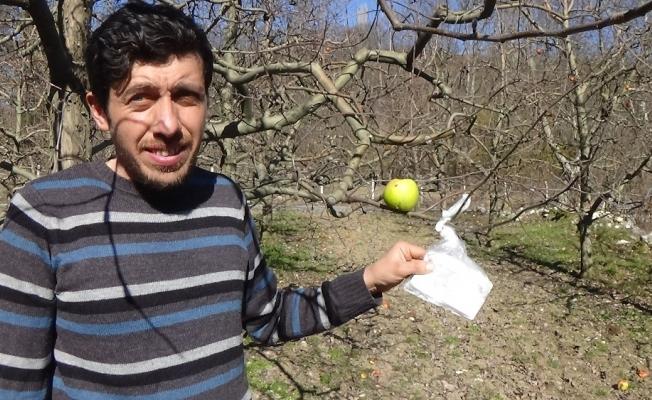 Elma ağacına bırakılan not tarla sahibini şaşırttı