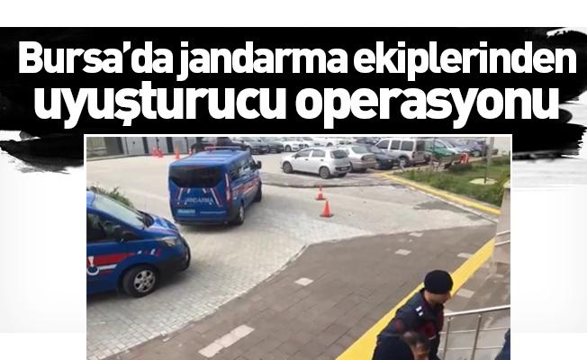Bursa'da jandarma ekiplerinden uyuşturucu operasyonu