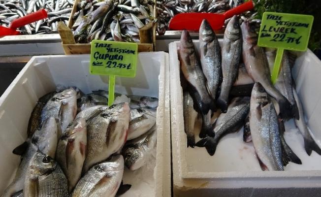 Vatandaş ucuz balık yesin diye fiyatları yarı yarıya düşürdü