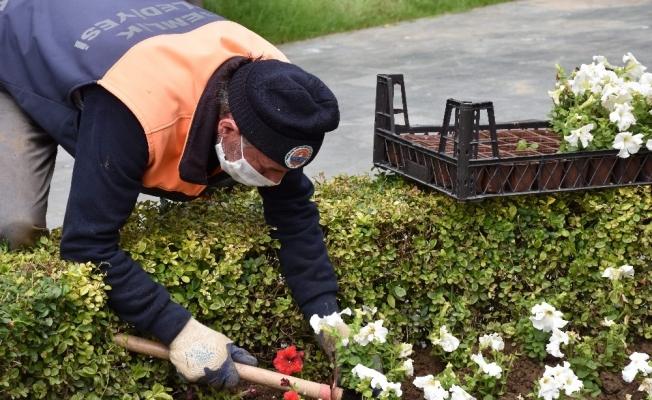 Gemlik'te binlerce çiçek toprakla buluşuyor
