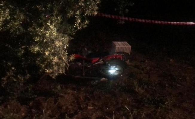 Motosikletle domuza çarpan vatandaş hayatını kaybetti
