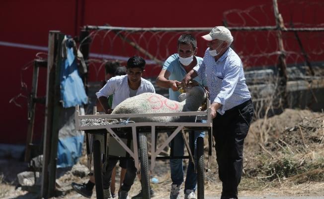 Bursa'da arife günü kurban pazarlarında hareketlilik yaşanıyor
