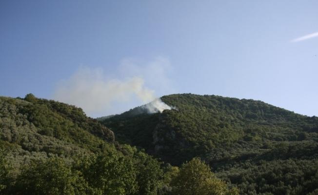 Bağ evindeki yangın ormanlık alana sıçradı