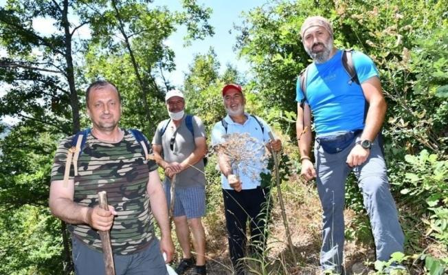 İznik'in saklı güzelliklerinden Tacir Kanyonu ziyaretçilerini bekliyor