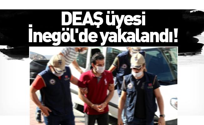 DEAŞ üyesi İnegöl'de yakalandı!
