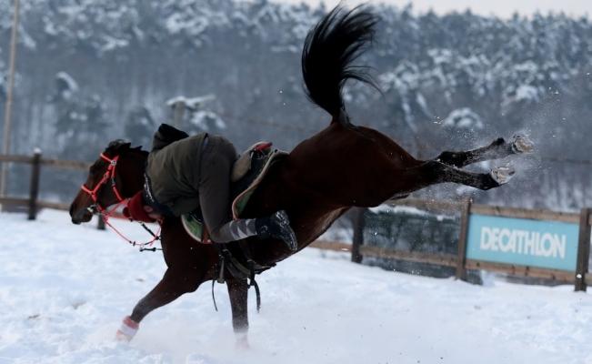 (Özel) Atların kar banyosu keyfi