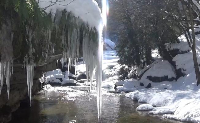 (Özel) Doğa harikası şelale buz tuttu, görenler hayran kaldı