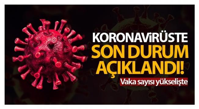 Türkiye'de son 24 saatte 8.104 koronavirüs vakası tespit edildi