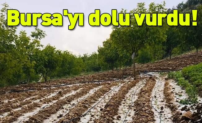 Bursa'yı dolu vurdu!
