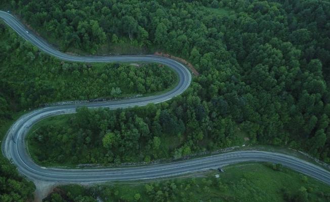 Bursa'da ormanların görüntüsü büyüledi