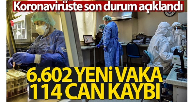 Türkiye'de son 24 saatte 6.602 koronavirüs vakası tespit edildi