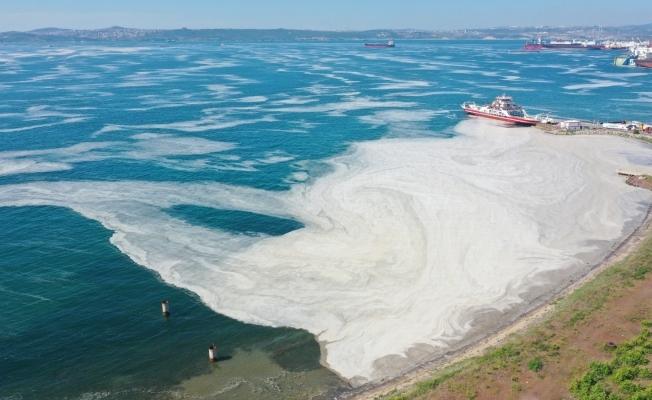 Yalova kıyılarında müsilaj görülmeye devam ediyor