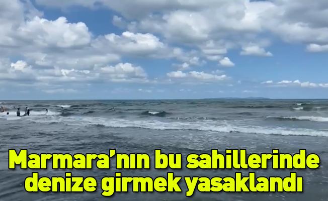 Marmara'nın bu sahillerinde denize girmek yasaklandı