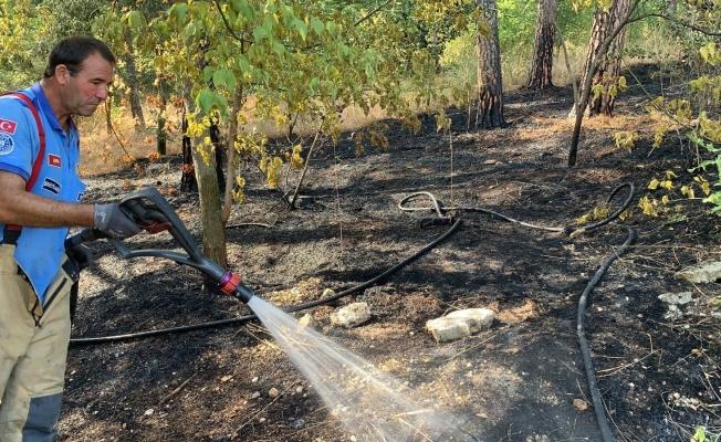 Hızlı müdahale ormanı kül olmaktan kurtardı