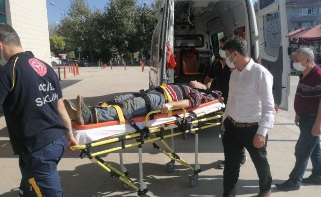 Ceviz ağacından düşen yaşlı adam ağır yaralandı