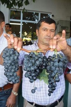 Mudanya Belediyesi Tarımsal Üründe Kalkınmayı…