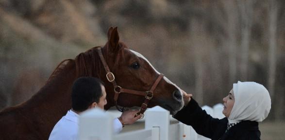 Emine Erdoğan atla tedavi merkezini ziyaret etti