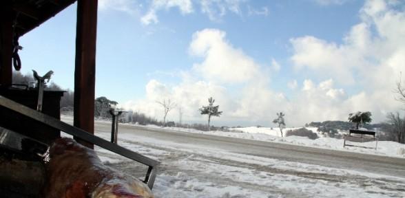 Kar üstünde Kuzu çevirme