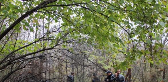 Ormanlık Alanda Parçalanmış Ceset Bulundu