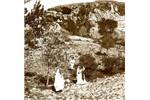 Osmanlı'nın son günlerinde kutsal topraklar
