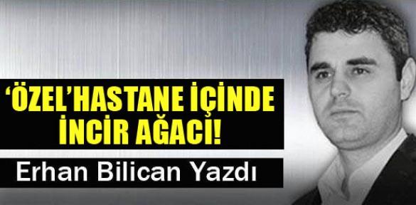 'ÖZEL'HASTANE İÇİNDE İNCİR AĞACI!