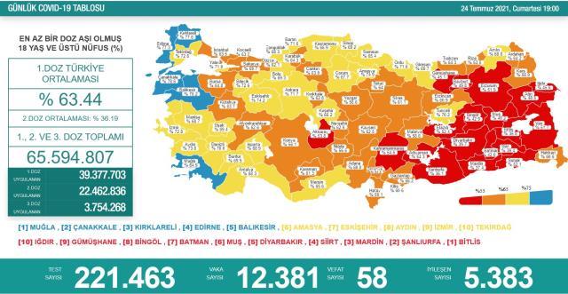 Son Dakika: Türkiye'de 24 Temmuz günü koronavirüs nedeniyle 58 kişi vefat etti, 12 bin 381 yeni vaka tespit edildi