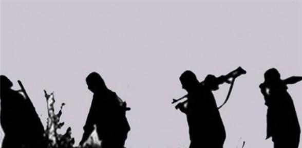 Teröristler 3 Kamyon Yaktı