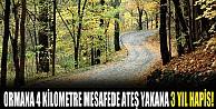 Bursa Orman Bölge Müdürlüğü Yaz Sezonuna Hazır