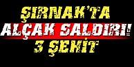 Şırnak#039;ta alçak saldırı: 3 şehit