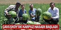 Çavuşköy#039;de Karpuz Hasadı Başladı