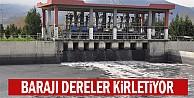 Barajı dereler kirletiyor