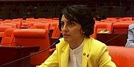 CHP'li vekilden Başbakan Yıldırım'a Ketendere yangınıyla ilgili soru önergesi