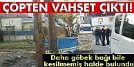 Bursa#039;da çöp konteynerinde bebek cesedi bulundu