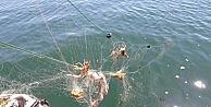 Göle kaçak atılan ağlara el konuldu