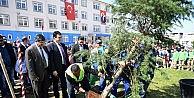 Osmangazide okul bahçeleri yeşilleniyor