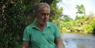 Yüzlerce tatlı su kefali yavrusu öldü