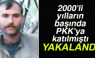 Terör örgütü PKK'nın sözde bölge komutanı Bursa'da yakalandı