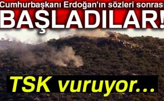 TSK, Afrin'deki mevzileri obüslerle vuruyor