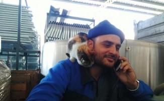 Karacabey'i üzen ölüm