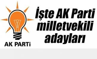 AK Parti 24 Haziran 2018 seçimi milletvekili adayları belli oldu