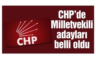 CHP Bursa Milletvekili Adayları belli oldu...