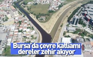 Bursa'da çevre katliamı, dereler zehir akıyor