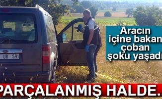 Bursa'da kayıp veterinerin cesedini çoban buldu
